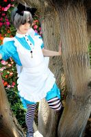 Ciel Phantomhive: In Wonderland by OztheNekoMaster