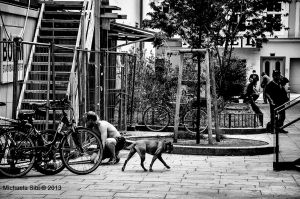 A bike repair and an unhappy dog by Wonderer1000