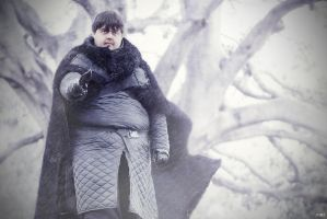 Samwell Tarly Game of Thrones by JMJ83