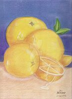 Oranges-pencilcolours practice 4 by Paty-Longbottom21