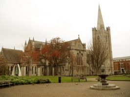 St. Patrick's Cathedral Park by Mikha