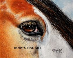 """Gypsy Vanner"" - Realism by robybaer"