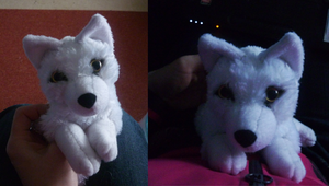 'Lil white wolf: finished by goiku
