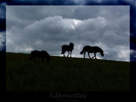 Silhouettes by WalkerGermany