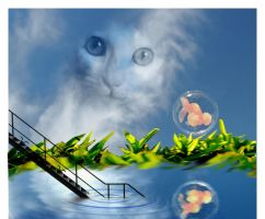 cat and fish by mrobization