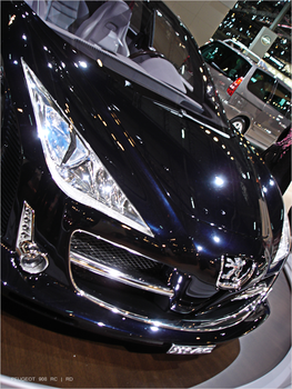 PEUGEOT 908 RC by roma1dub