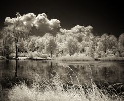 Infrared Reflection by hhjjii