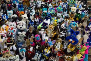 BLFC 2015 Closeup by wolfforce58
