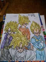 Goku, Vegeta, Gohan and Trunks by Harribel55