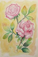 Watercolor roses by Eli150693