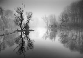 through the misty air III. by arbebuk