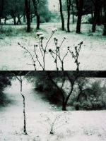 we grew lonely living among things by PsycheAnamnesis