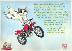 Jump Kitty Meow by Switchum