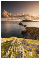 Dingle stories by martinkaluza