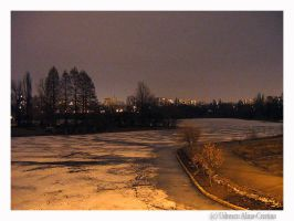 frozen lake at night by crisvsv