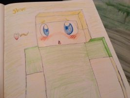 Steve :3 by hitsong955