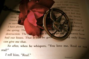Real Or Not Real by braidsandarrows