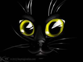 Cat's eyes 2013 by Keymagination