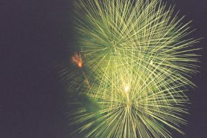 2006 Fireworks 03 by Syagria