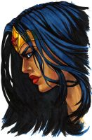 Wonder Woman (Facial Profile) by Eiluvision