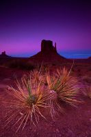 Monument Valley at Dusk by gursesl