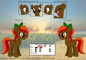 Sunset on the Morrow Official Reference Sheet by Caro-Kitty
