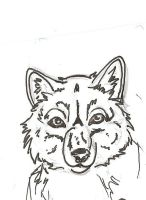 Wolf front face by wolfworld