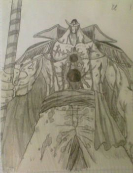 Whitebeard by ERALD96