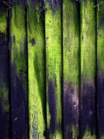 green boards by awjay