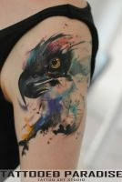 watercolor eagle by dopeindulgence