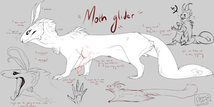 Moth Glider [species ref] by CoyoteSoot