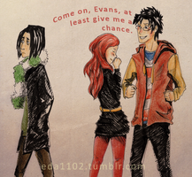 HP: The Chances with Lily by eda1102