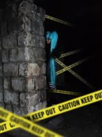 Vocaloid Keep Out by Vaffe