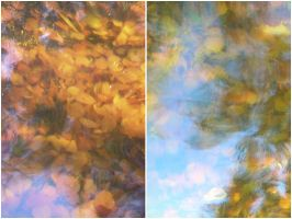 claude monet autumn. by freckledmystery