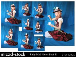 Lady Mad Hatter Pack 11 by mizzd-stock