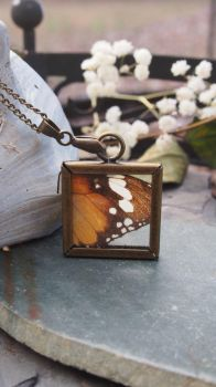 Handmade Butterfly Wing Necklace by Avelith