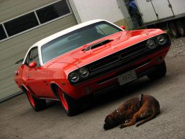 1971 Dodge Challenger HEMI I by AmericanMuscle