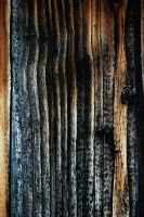 Texture 15 by Mithgariel-stock