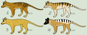 Thylacine adoptables by homeqrown