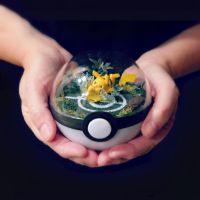 Pikachu Battle Field - Poke Ball Terrarium by TheVintageRealm