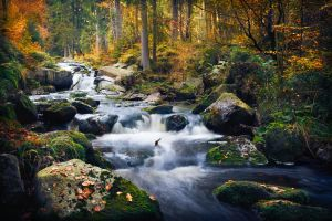 Autumn creek by aw-landscapes