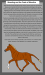 Breeding and the Foals of Wendice by ForeignBlackJack