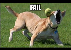 EPIC FAIL DOG by cobalt900