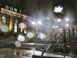 Raining on Campus (UW Tacoma) by dsimple