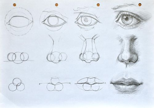 Facial features construction(cyclops tutorial :D) by anotherwanderer
