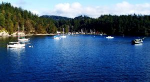 Orcas Island by Rcsicechest