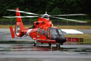 HH-65 Dolphin Taxi by shelbs2