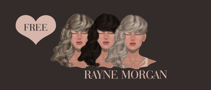 RM - Instant Painted Hair 178 by RayneMorgan