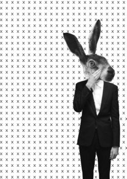mr. hare by hetherz