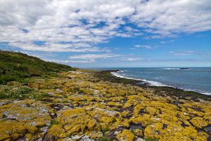 Shores of Farne by parallel-pam